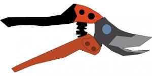 Pruning tool