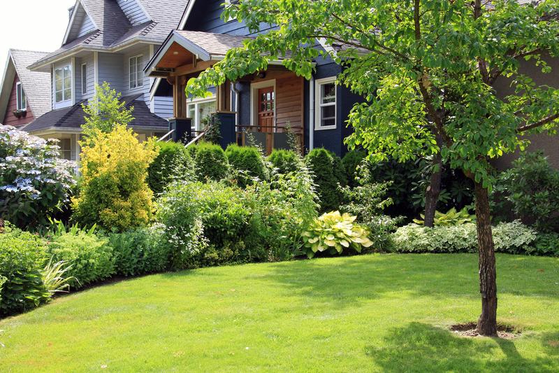 Lush home garden