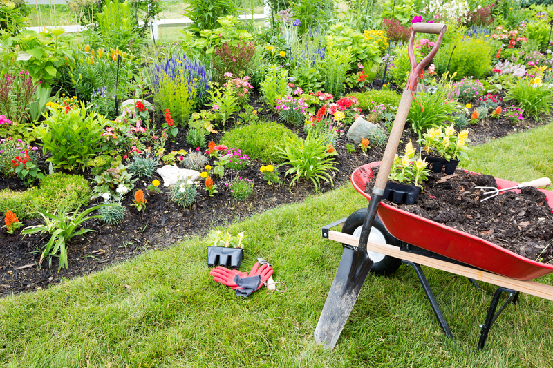 Gardening Equipment and Plants
