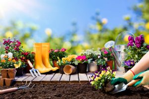 essential garden tools for planting flowers