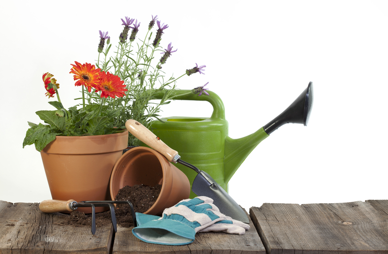 a plant in a brown pot, green watering can and some other gardening tools sitting on a wooden bench